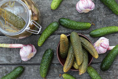 Cucumbers. Closeup of some pickled and fresh cucumbers Royalty Free Stock Photo