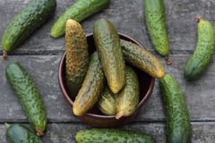 Cucumbers. Closeup of some pickled and fresh cucumbers stock photography