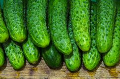 Cucumbers are composed of two tiers. Washed cucumbers are made up of two tiers on a wooden surface Stock Photography