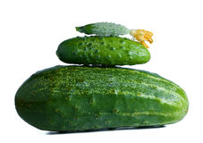 Cucumbers composition. Three green cucumbers different size Stock Photos