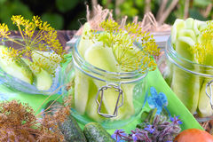 Cucumbers, dill, borage stock images