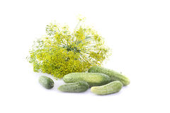 Cucumbers, dill and Horseradish Royalty Free Stock Photo