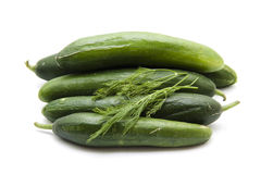 Cucumbers with dill Royalty Free Stock Images