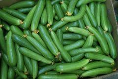 Cucumbers at Dubai market Royalty Free Stock Images