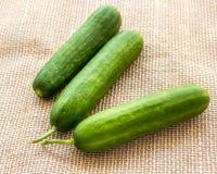 Cucumbers. Fresh and organic cucumbers close-up image Stock Image