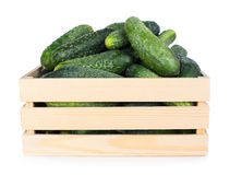 Cucumbers. Fresh ripe cucumbers in wooden box isolated on white background Royalty Free Stock Images