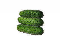 Cucumbers on white background. Fresh cucumbers on white background. Three cucumbers isolated. Food Royalty Free Stock Photo