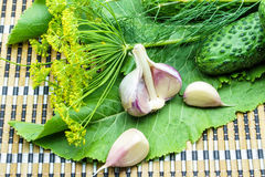 Cucumbers, garlic, dill and horseradish on a napkin. Cucumbers, garlic, dill and horseradish on a bamboo napkin stock photography