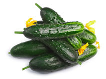 Cucumbers gherkins pile, top view, paths Royalty Free Stock Photos