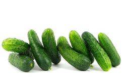 Cucumbers. Gherkins on white background Stock Image