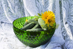 Cucumbers in a glass green vase or bowl on the background of lac Royalty Free Stock Images