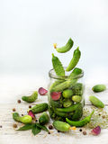 Cucumbers with herbs and spices for pickling in glass jar with flying ingredients Royalty Free Stock Photo