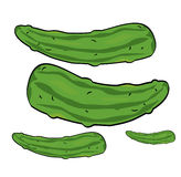 Cucumbers illustration Royalty Free Stock Photos