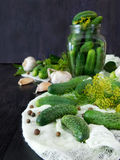 Cucumbers and ingredients for conservation Royalty Free Stock Images
