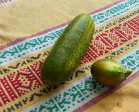Cucumbers irregularly shaped on linen tablecloths Royalty Free Stock Images