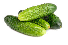Cucumbers isolated Royalty Free Stock Images