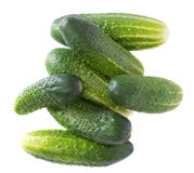 Cucumbers isolated on white. Background Stock Photos