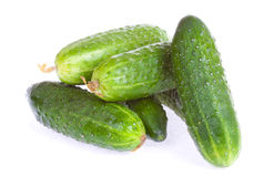 Cucumbers isolated on a white Royalty Free Stock Photo