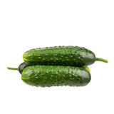 Cucumbers isolated on white background. Stock Images