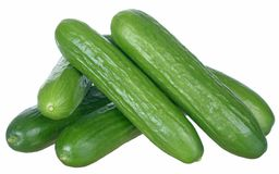 Cucumbers isolated on white background Royalty Free Stock Image