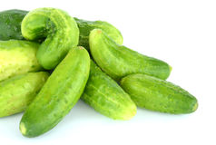 Cucumbers isolated on white. High resolution color image Stock Image