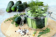 Cucumbers in the jar with dill salt and pepper Stock Photos