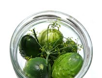 Cucumbers in jar with herbs. A jar of cucumbers and herbs made for pickling royalty free stock image