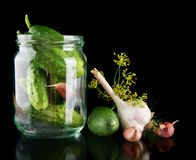 Cucumbers in jar preparate for pickling on black Stock Photos