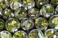 Cucumbers in jars Stock Photo