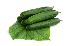Cucumbers with leaf Stock Photo