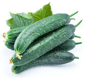Cucumbers with leaves. Royalty Free Stock Photography
