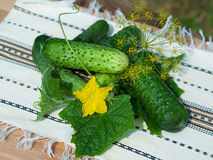 Cucumbers with leaves on wooden table Stock Photos