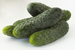 Cucumbers on a light background. Isolated object. royalty free stock images