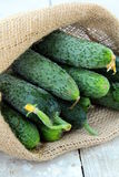 Cucumbers in a linen bag Royalty Free Stock Images