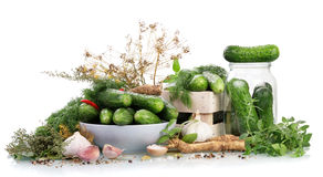 Cucumbers for marinate. With dill and garlic Royalty Free Stock Image