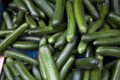 Cucumbers. At the market of Athens Royalty Free Stock Image