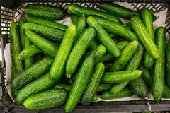 Cucumbers at market Stock Photos
