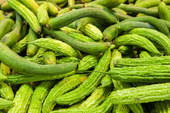 Cucumbers at market Stock Images