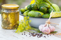 Cucumbers in metal bowl, spices for pickling and jar pickled cucumbers on table Stock Photography