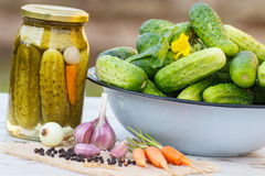 Cucumbers in metal bowl, vegetables and spices for pickling and jar pickled cucumbers Stock Photography