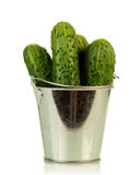 Cucumbers in metal bucket Royalty Free Stock Photo