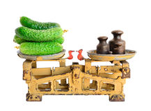 Cucumbers on old scales Stock Photos
