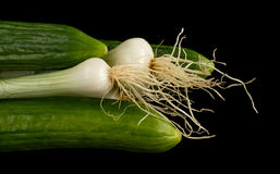Cucumbers and onion Royalty Free Stock Images
