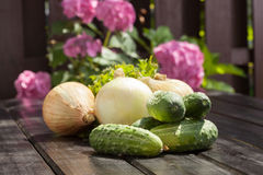 Cucumbers and onion. Preparation of inventories for the winter Royalty Free Stock Images