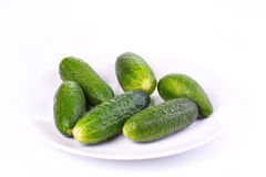 Cucumbers on a plate isolated on a white background Royalty Free Stock Photography