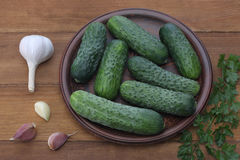 Cucumbers in plate on wood background Royalty Free Stock Photo