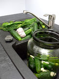 Cucumbers preservation stock images