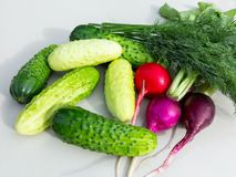 Cucumbers, radishes, dill on the white surface of the table stock image