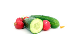 Cucumbers and radishes. Fresh cucumbers and radishes on white background Stock Photos