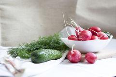 Cucumbers, radishes and herbs. Fresh spring vegetables stock photography